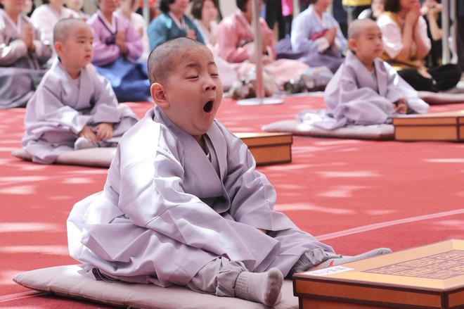 Loạt sắc thái đáng yêu hết nấc của các chú tiểu trong ngày xuống tóc đón lễ Phật Đản ở Hàn Quốc - Ảnh 5.