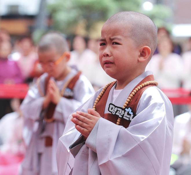 Loạt sắc thái đáng yêu hết nấc của các chú tiểu trong ngày xuống tóc đón lễ Phật Đản ở Hàn Quốc - Ảnh 12.