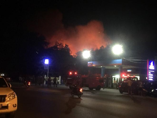 Hơn 1.000 người căng mình dập tắt vụ cháy rừng dữ dội ở Hà Tĩnh - ảnh 1